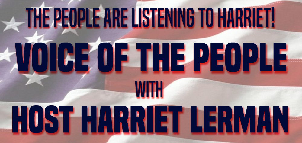 VOICE OF THE PEOPLE BANNER